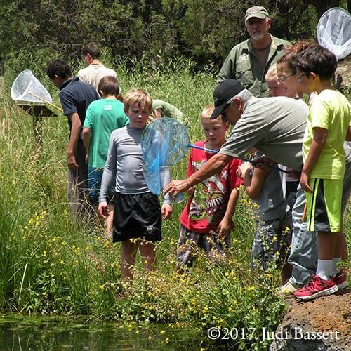 Pinetop-Lakeside events (image)
