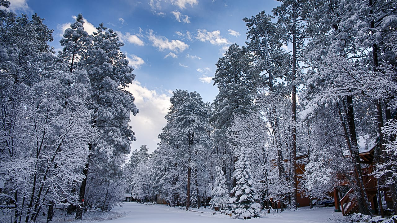 Pinetop-Lakeside winter scene slider (iimage)`Pinetop-Lakeside winter scene slider