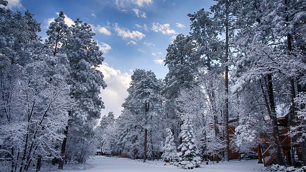 Pinetop-Lakeside winter scene slider (iimage)`Pinetop-Lakeside winter scene slider