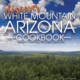 Discover White Mountain Arizona Cookbook (image)