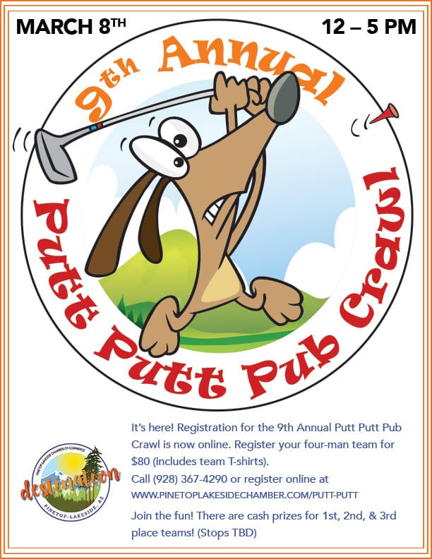 9th Annual Putt Putt Pub Crawl flier